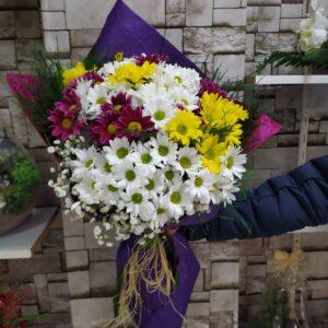Renkli Papatya Çiçekleri