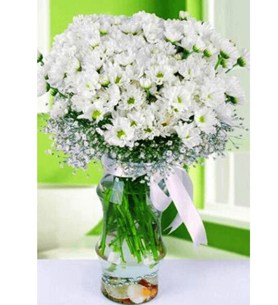 Vazoda beyaz papatyalar Aklınızda Değil Sevdiğinizin Masasında Dursun Vazoda Mis Kokulu Kır Papatyaları